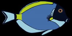 Tropical Fish pattern - Powder Blue Tang Surgeon - Stephanie Peters ...