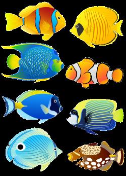 Tropical fish Angelfish Aquarium Clip art - Six cartoon fish 720 ...
