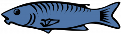 28+ Collection of Salmon Fish Clipart | High quality, free cliparts ...