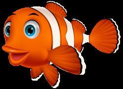 Clown fish PNG Clipart | Fish | Pinterest | Fish, Clip art and Bears