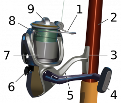 How To Choose a Fishing Reel - The Wilderness Review