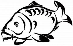 Carp Drawing Big Fish   Henna   Pinterest   Carp, Big fish and Fish