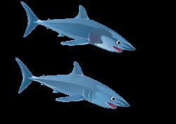 Public Domain Clip Art Image | Blue Shark | ID: 13533865216285 ...