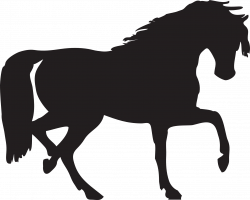 Horse Silhouette Two | Isolated Stock Photo by noBACKS.com