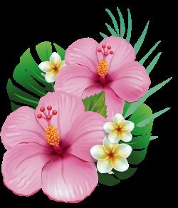 5.png | Hawaiian, Moana and Flowers