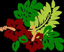 Kostenloses Bild auf Pixabay - Hibiskus, Blumen, Rot, Tropisch ...