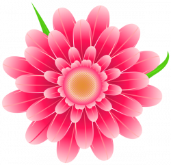 Transparent Pink Flower Clipart PNG Image | Various pics | Pinterest ...
