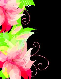 Cute Floral Decoration Transparent PNG Clipart   Gallery ...