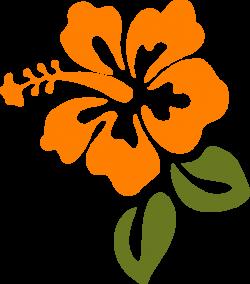 vectores de flores - Buscar con Google | playita | Pinterest | Art ...
