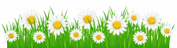 28+ Collection of Flower With Grass Clipart | High quality, free ...