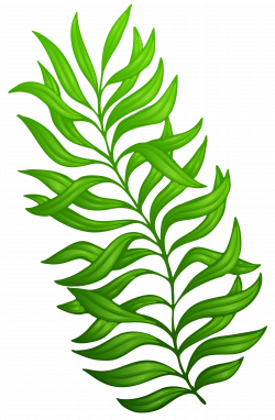Plant Clipart at GetDrawings.com | Free for personal use Plant ...
