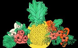 Pineapple Fruit Flower Clip art - tropical flower 2599*1601 ...
