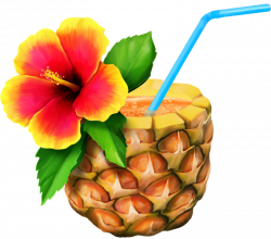 Hawaiian Aloha Free content Clip art - A pineapple 800*706 ...