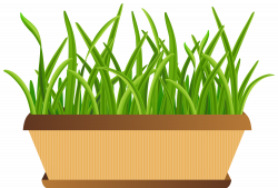28+ Collection of Flower Pot Clipart Free | High quality, free ...