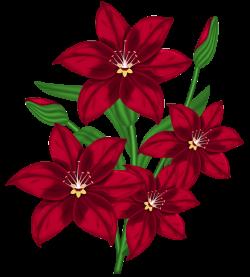 Nice Red PNG Flower Clipart | Flowers | Pinterest | Flower clipart ...