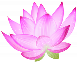 28+ Collection of Lotus Clipart Wallpaper | High quality, free ...