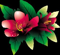 Tropical Flower HQ PNG by BrielleFantasy on DeviantArt
