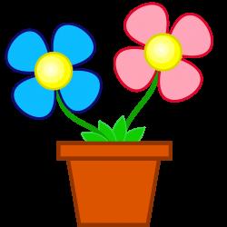 2 Flower Pots – Greenfain