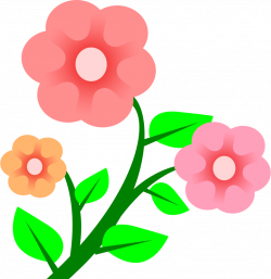 3 flowers by Peileppe -