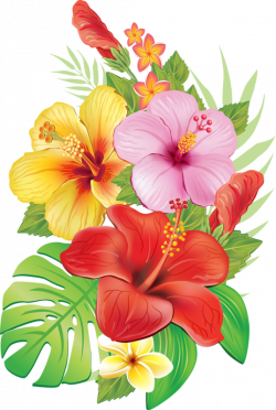 0_a04cd_3e4ec0ed_orig.png | Pinterest | Flowers, Easy paintings and ...