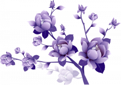Image - Free-flower-clipart-no-background-50.png | Animal Jam Clans ...