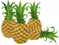28+ Collection of Free Pineapple Clipart | High quality, free ...