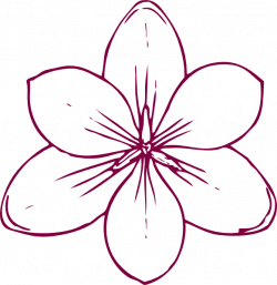 Magnolia Flower Clipart | Free download best Magnolia Flower Clipart ...