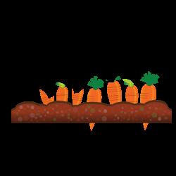 clipartist.net » Clip Art » Abstract Crops Carrot Scalable Vector ...