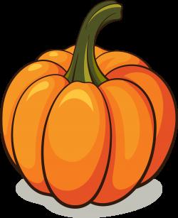 Pumpkin PNG Image - PurePNG   Free transparent CC0 PNG Image Library