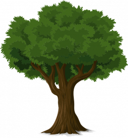 Free Image on Pixabay - Tree, Forest, Trunk, Nature, Leaves   Free ...
