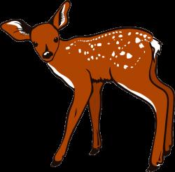 Cute Deer Clipart | Clipart Panda - Free Clipart Images