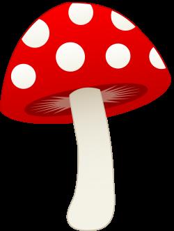 ✿⁀Shrooms‿✿⁀ | ᗰᘎՏɧᖇᎧᎧᗰՏ | Pinterest | Clip art, Cricut ...