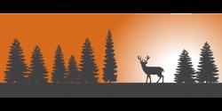 Forest, Forest Sunset Deer Nature Landscape Scenic #forest, #forest ...