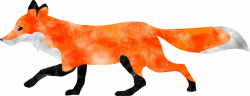 28+ Collection of Fox Clipart Transparent | High quality, free ...