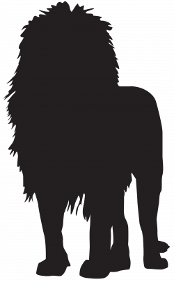 Lion Silhouette PNG Transparent Clip Art Image | Safari | Pinterest ...