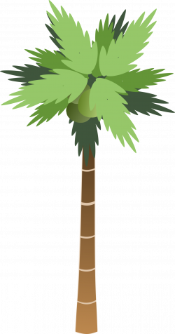 Clipart - Palm Tree