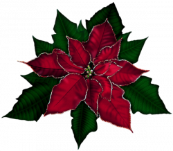 18cute Poinsettia Clip Art - Clip arts & coloring pages