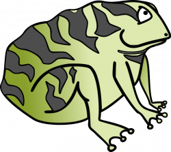 Frog Animal Clipart Pictures Royalty Free | Clipart Pictures Org