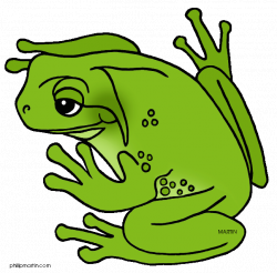Tree Frog Clip Art | Clipart Panda - Free Clipart Images