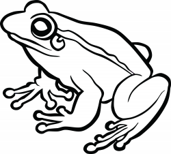 Toad PNG Black And White Transparent Toad Black And White.PNG Images ...