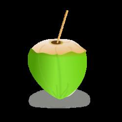 Coconut Drink Clip Art at Clker.com - vector clip art online ...