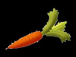Root Vegetables Carrot Fruit Clip art - Cartoon carrot 800*600 ...