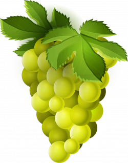 Grape PNG Transparent Free Images   PNG Only