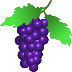 OnlineLabels Clip Art - Grapes