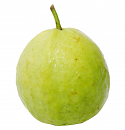 Guava PNG Image - PurePNG | Free transparent CC0 PNG Image Library