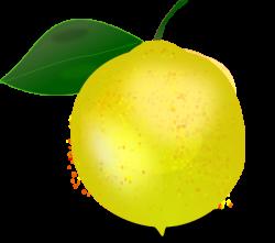 Lemon Photorealistic Clip Art at Clker.com - vector clip art online ...