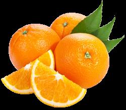 Orange juice Tangerine Bitter orange Fruit - orange clipart 2500 ...