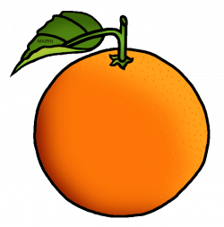 28+ Collection of An Orange Clipart   High quality, free cliparts ...