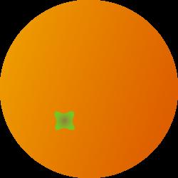 Whole Round Orange Fruit - Free Clip Art