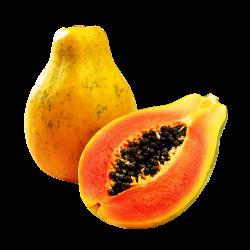 Top Redfoot Tortoise Foods - Papaya | pets | Pinterest | Tortoise food